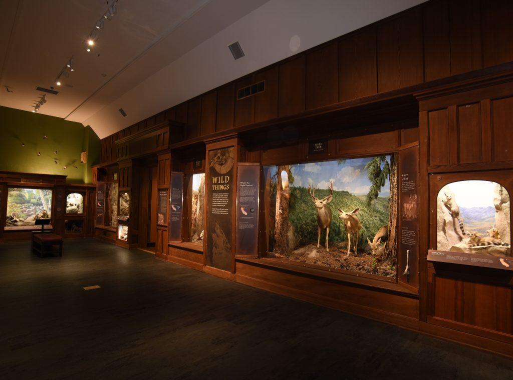 Santa-Barbara-Museum-of-Natural-History-1