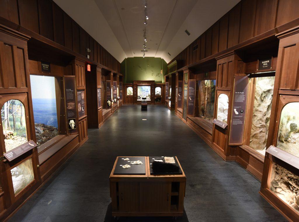 Santa-Barbara-Museum-of-Natural-History-2
