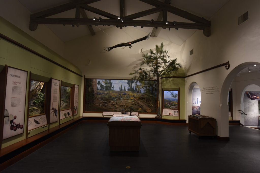 Santa-Barbara-Museum-of-Natural-History-4