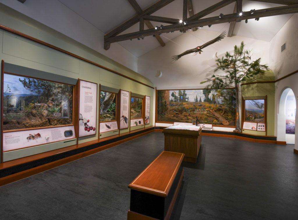 Santa-Barbara-Museum-of-Natural-History-6