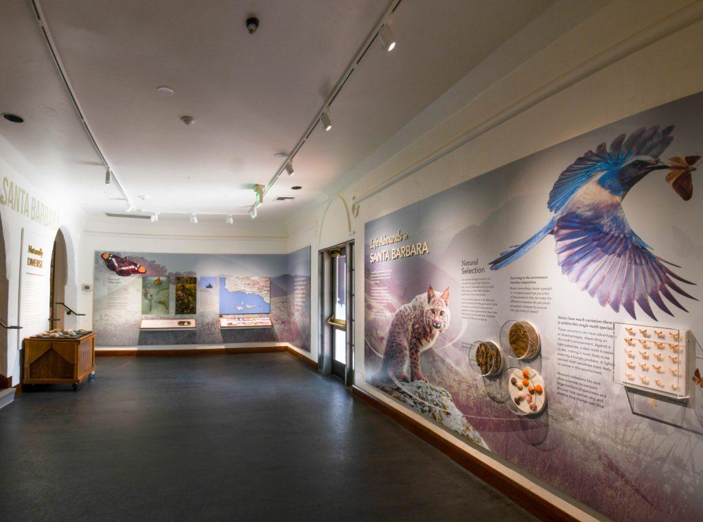 Santa-Barbara-Museum-of-Natural-History-7